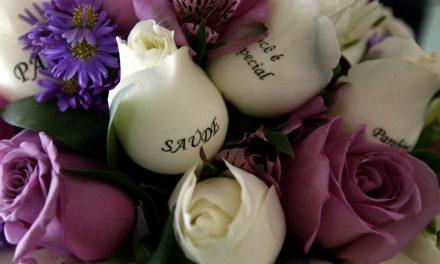 Mensagens escritas nas pétalas das flores