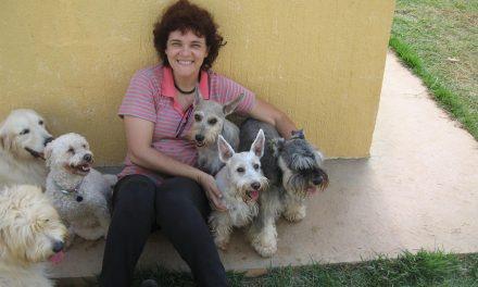 Psicóloga transforma cães em terapeutas