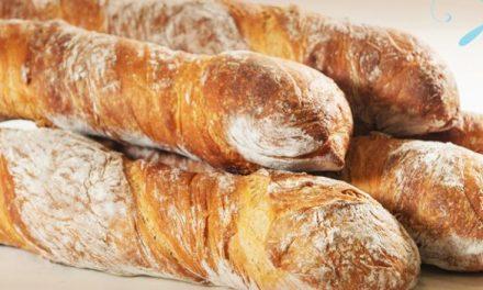 Panesse: novo tipo de pão chega ao mercado com slogan, site, SAC e página no Facebook