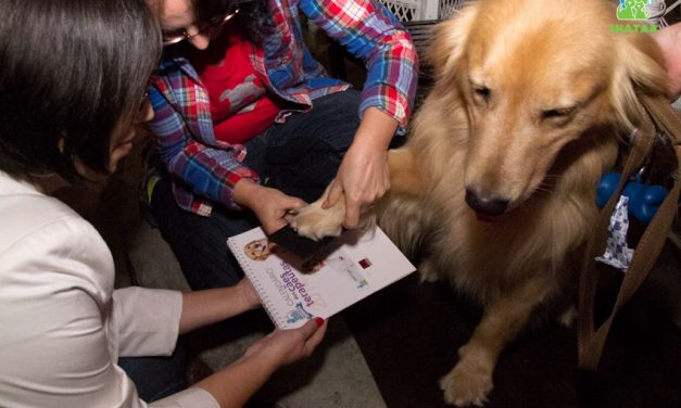 """Cachorros distribuem """"patógrafos"""" em lançamento de calendário"""