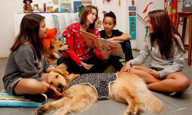 Empresa em Pinheiros oferece terapia com participação de cães